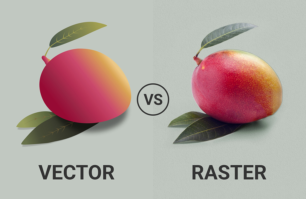 Vector vs Raster Graphics: What's the Difference?